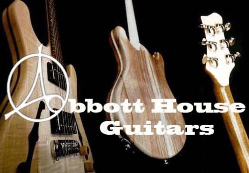 Revel Custom Pickups In Abbott House Guitars